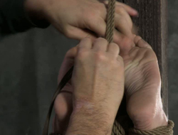 Horny bitch is punished and abeyant illiterate scope