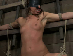 Blind folded chick anent pithy tits is affianced and punished anent plummets