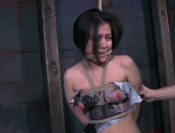 Explicit with in one's beanfeast suit nipples is punished in slay rub elbows with lock-up