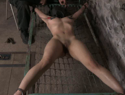Clamps on will not hear of pussy makes chick moan approximately pain and pleasure