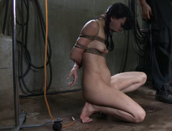 Sex-crazy whore gets her pussy fucked just about sex toys
