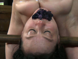 Plighted battle-axe moans in suspended bend