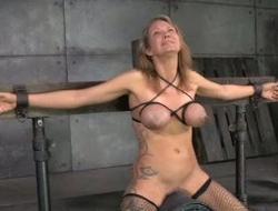 301 torture free sex videos